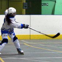 Hockey Site 300
